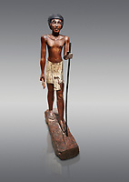 Ancient Egyptian wooden statue of Wepwawetemhat, Middle Kingdom, 12th Dynasty, (1939-1875 BC), Asyut, Tomb of Minhotep. Egyptian Museum, Turin. Cat 8786. Grey background.