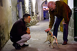 The old man walked along the harbor of Camogli with his dog and had a small talk with a barkeeper. Within the conversation the dog wanted to play and the man did it very affectionate.
