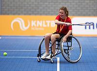 December 189 2014, Rotterdam, Topsport Centrum, Lotto NK Tennis, minitennis<br /> Photo: Tennisimages/Henk Koster