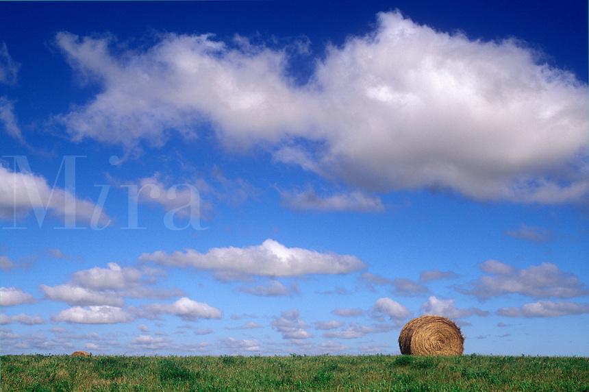 Single bale of hay in huge prarie field, Winnipeg, Manitoba, Canada