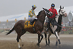 May 16, 2015: Preakness contender Danzig Moon, Julien Leparoux up, takes part in a rain-drenched post parade. American Pharoah, Victor Espinoza up,  wins the Preakness Stakes at Pimlico Race Course in Baltimore, MD. Trainer is Bob Baffert; owner is Zayat Stables. Joan Fairman Kanes/ESW/CSM
