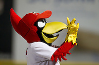 Springfield Cardinals Mascot, Louie, pumps up the crowd during a game against the Tulsa Drillers at Hammons Field on July 19, 2011 in Springfield, Missouri. Tulsa defeated Springfield 17-11. (David Welker / Four Seam Images)