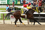 Trinnieberg with Willie Martinez win the 28th running of the Grade II Woody Stephen for 3-year olds going 7 fulongs at Belmont.  Trainer Bisnath Parboo.  Owner Shivavanda Racing
