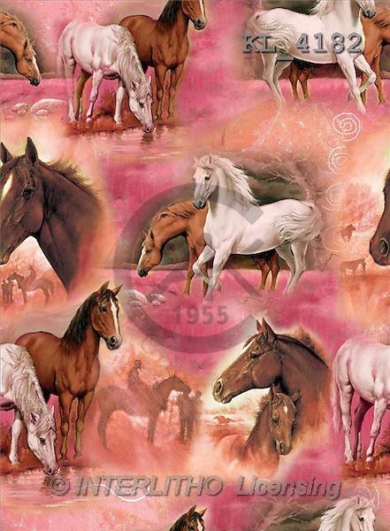 Interlitho, Daniela, GIFT WRAPS, paintings, horses(KL4182,#GP#) everyday