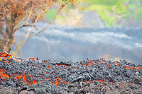 Lava flow in the abandoned Royal Gardens subdivision, Remnants of Paradise street in the background, East of Hawaii, USA Volcanoes National Park, Kalapana, Hawaii, USA, The Big Island of Hawaii, USA