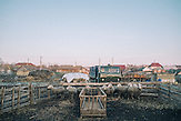 Nahe Comrats,  der Hauptstadt des autonomen Gebietes Gagausiens in dem ca. 160000 Einwohner leben, die Republik Moldau ist eines der ärmsten Länder Europas