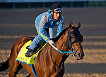 LOUISVILLE, KY - APRIL 28: Dream Baby Dream exercises in preparation for the Kentucky Derby at Churchill Downs on April 28, 2018 in Louisville, Kentucky. (Photo by Scott Serio/Eclipse Sportswire/Getty Images)