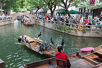 Suzhou, Jiangsu, China.  Comorants Resting on a Boat on a Canal in Tongli Ancient Town near Suzhou, a popular weekend tourist destination.