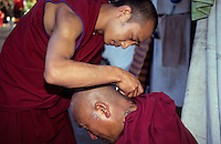 "INDIA, Karnataka, Bylakuppe, tibetan buddhist in refugee settlements, monks shave their heads / INDIEN, Bylakuppe, tibetische buddhistische Moenche in den tibetischen Fluechtlings-Siedlungen ""Lugsum Samdupling"", gegruendet 1960 und ""Dickyi Larsoe"", gegruendet 1969"