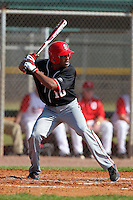 Kyle Richardson #10 of the St. John's Red Storm during a game vs the Ohio State Buckeyes at the Big East-Big Ten Challenge at Walter Fuller Complex in St. Petersburg, Florida;  February 20, 2011.  Ohio State defeated St. John's 8-7 in 11 innings.  Photo By Mike Janes/Four Seam Images