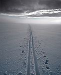 Cross country skiing, Sierra Nevada, California