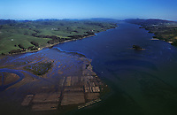 aerial photograph oyster farming, Tomales Bay, Sonoma County, California