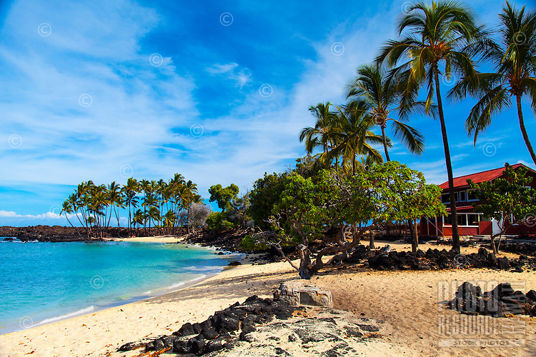 Coconut palm trees line a salt-and-pepper sand beach, with a single red house behind them and a white sand cove in the distance, Kona, Big Island.