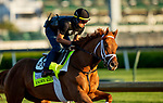 April 27, 2021:  Known Agenda gallops in preparation for the Kentucky Derby at Churchill Downs in Louisville, Kentucky on April 27, 2021. EversEclipse Sportswire/CSM