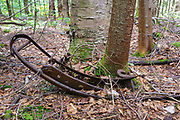 Artifact (part of a sled runner on a logging sled) at the Old Johnson Camp in the Pemigewasset Wilderness, New Hampshire. This camp, owned by the Johnson Lumber Company (Gordon Pond Railroad), was located on the side of Mount Liberty in the Liberty Brook drainage of the Pemigewasset Wilderness. The Johnson Lumber Company owned a stand of spruce on the Pemigewasset Wilderness side of Mount Liberty, but they couldn't reach it from the Gordon Pond Railroad because the terrain was too steep and it was surrounded by land owned by the East Branch & Lincoln Railroad. George Johnson, owner of the Johnson Lumber Company, made a deal with J.E. Henry & Sons to haul the timber out using the East Branch & Lincoln Railroad. The removal of historic artifacts from federal lands without a permit is a violation of federal law.