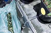 Cannabis plant trimmings lay in a trash bag at the production and packaging facility for Garden Remedies, a medical cannabis producer, in Fitchburg, Massachusetts, USA, on Fri., Feb. 22, 2019. The lower end of the plants is trimmed to encourage leaf and flower growth at the top of the plants in a pruning process sometimes called lollipopping.