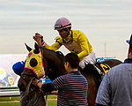 OZONE PARK, NEW YORK - NOV 25: Control Group, #6, ridden by Joel Rosario, wins the 73rd running of the Discovery Stakes, at Aqueduct Racetrack, on November25, 2017 in Ozone Park, New York. ( Photo by Sue Kawczynski/Eclipse Sportswire/Getty Images)