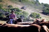 stockman de l'élevage Santacroce, Moindou