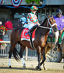 July 4, 2021: Firenze Fire, ridden by Irad Ortiz Jr., in the post parade prior to the 2021 running of the G2 John A. Nerud S. at Belmont Park in Elmont, NY. Sophie Shore/ESW/CSM