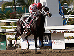 7 February 2009:  Honest Man, Gabriel Saez up, wins the Mineshaft Stakes on Risen Star Stakes Day at the Fair Grounds Race Course in New Orleans, Louisiana.