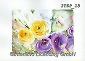 Franco, FLOWERS, BLUMEN, FLORES, paintings+++++,ITZP18,#f#, EVERYDAY