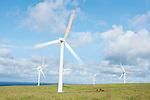 USA, HI, Kohala, Wind Turbines
