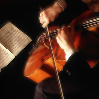 Cellist.  Hands of cello player with bow and sheet music