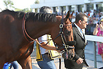 August 2, 2015. American Pharoah walks to the paddock before the  Grade I William Hill Haskell Invitational Stakes, one and 1/8 miles on the dirt  for three year olds at Monmouth Park in Oceanport, NJ.  Joan Fairman Kanes/ESW/CSM