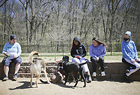 Stephanie Fitzpatrick of Bentonville (from left) Jasmine James of Fayetteville, Marlen Cuellar of Fayetteville and Kari Lund of Bella Vista watch dogs play, Thursday, April 1, 2021 at the Bentonville Dog Park in Bentonville. Check out nwaonline.com/210402Daily/ for today's photo gallery. <br />