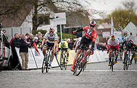 Cees Bol (NED/Sunweb) wins the bunch sprint & thus the 74th Nokere Koerse 2019 <br /> <br /> One day race from Deinze to Nokere / BEL (196km)<br /> <br /> ©kramon