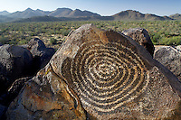 Hohokam rock art. Saguaro National Park. Arizona