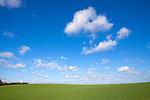 Europa, DEU, Deutschland, Nordrhein Westfalen, NRW, Rheinland, Niederrhein, Toenisberg, Schaephuysener Hoehen, Am Wolfsberg, Agrarlandschaft, Feld, Acker, Himmel, Wolken, Kategorien und Themen, Natur, Umwelt, Landschaft, Jahreszeiten, Stimmungen, Landschaftsfotografie, Landschaften, Landschaftsphoto, Landschaftsphotographie, Wetter, Himmel, Wolken, Wolkenkunde, Wetterbeobachtung, Wetterelemente, Wetterlage, Wetterkunde, Witterung, Witterungsbedingungen, Wettererscheinungen, Meteorologie, Bauernregeln, Wettervorhersage, Wolkenfotografie, Wetterphaenomene, Wolkenklassifikation, Wolkenbilder, Wolkenfoto....[Fuer die Nutzung gelten die jeweils gueltigen Allgemeinen Liefer-und Geschaeftsbedingungen. Nutzung nur gegen Verwendungsmeldung und Nachweis. Download der AGB unter http://www.image-box.com oder werden auf Anfrage zugesendet. Freigabe ist vorher erforderlich. Jede Nutzung des Fotos ist honorarpflichtig gemaess derzeit gueltiger MFM Liste - Kontakt, Uwe Schmid-Fotografie, Duisburg, Tel. (+49).2065.677997, ..archiv@image-box.com, www.image-box.com]