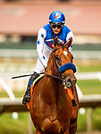 AUGUST 20, 2021:  Private Mission with Flavien Prat up wins the Torrey Pines Stakes at Del Mar Fairgrounds in Del Mar, California on August 20, 2021. Evers/Eclipse Sportswire/CSM