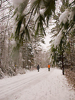Couple walking down snow covered road through the woods<br />
