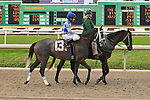 January 16, 2016: Haunted Heroine with Richard Eramia up in the Marie G. Krantz Memorial Stakes race at the Fairground race course in New Orleans Louisiana. Steve Dalmado/ESW/CSM