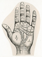 map of the hand / The Graphic (from an advertisement) / circa 1890