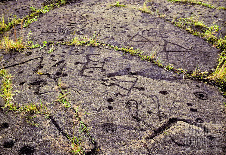 ancient petroglyphys carved in pahoehoe lava at Pu`u loa, Hawaii Volcanoes National Park