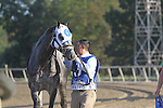 September 19, 2015.  Frosted, Joel Rosario up, wins the $1,000,000 Grade II Pennsylvania Derby, one and 1/8th miles for three-year-olds, at  Parx Racing in Bensalem, PA. Trainer is Kiaran McLaughlin, owner is Godolphin Racing. (Joan Fairman Kanes/ESW/CSM)