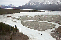 Aerial view of Melissa Owens' team as it runs down a trail of rock and glare ice on the South Fork of the Kuskokwim after leaving Rohn during Iditarod 2008 Sled Dog Race