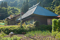 An elderly woman works in a vegetable patch below a traditional mountain house in Nobushina, Nagano, Japan.