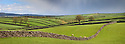 Drystone walls near Litton, Peak District National Park, Derbyshire, UK. May. Digitally stitched panorama.