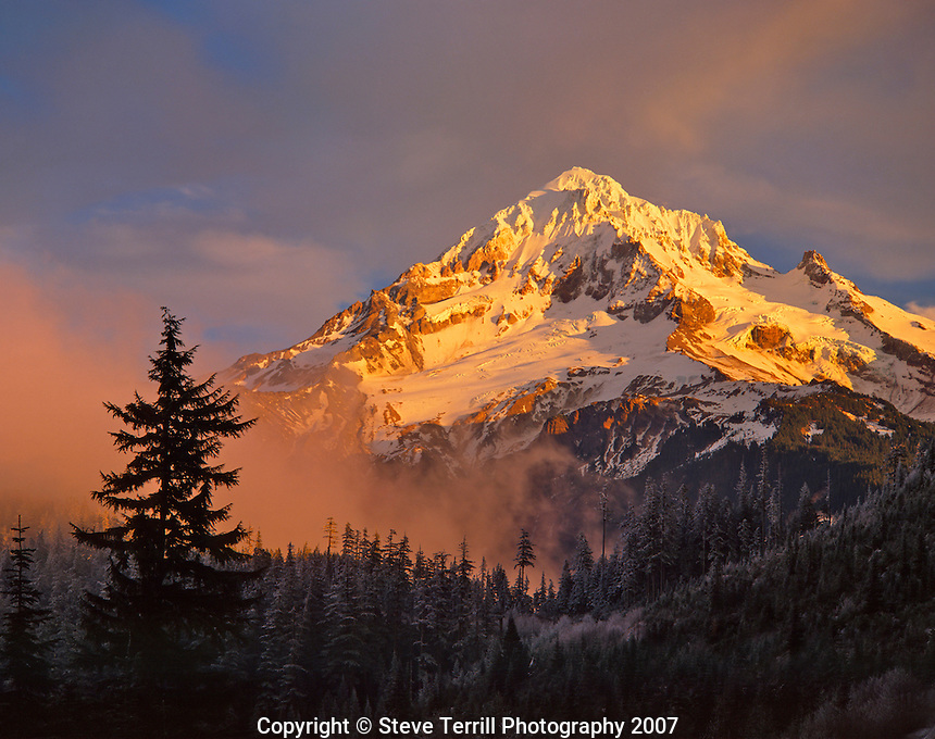 Mt Hood in late winter light from Lolo Pass Oregon