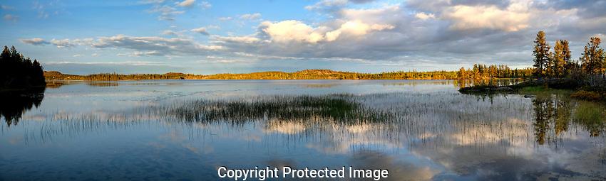 autumn at Tibbett lake