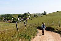 Weiden bei Kåseberga, Provinz Skåne (Schonen), Schweden, Europa<br /> pasture near Kåseberga, province Skåne, Sweden