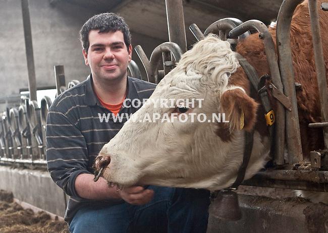 Velp, 280109<br /> Gijs Teunissen van Manen bij een zuivere Fleckvieh.<br /> Sjef Prins - APA Foto