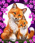Kayomi, CUTE ANIMALS, LUSTIGE TIERE, ANIMALITOS DIVERTIDOS, paintings+++++,USKH301,#ac#, EVERYDAY ,#A#,realistic ,fox,foxes