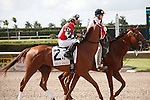 Close It Out on post parade for The Smile Sprint Handicap (G2), Calder Race Course, Miami Gardens Florida. 07-07-2012.  Arron Haggart/Eclipse Sportswire.