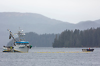 Commercial fishing boat during the Sitka sac roe herring fishery, Sitka Sound, southeast, Alaska