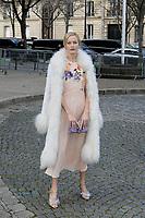 Carolyn MURPHY - Show Miu Miu - Paris Fashion Week Womenswear Fall/Winter 2017/2018 - France