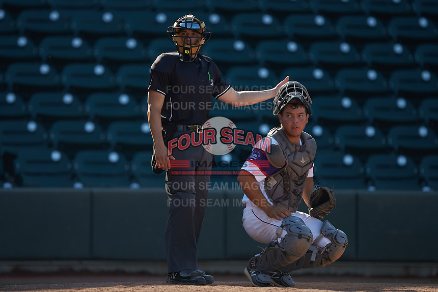 Winston-Salem Rayados catcher Carlos Perez (14) and home plate umpire Steven Hodgins looks towards the first base dugout during the game against the Lynchburg Hillcats at BB&T Ballpark on June 23, 2019 in Winston-Salem, North Carolina. The Hillcats defeated the Rayados 12-9 in 11 innings. (Brian Westerholt/Four Seam Images)
